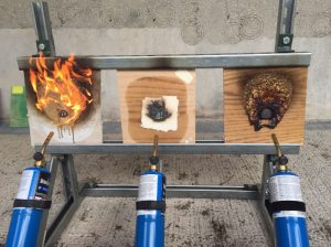 Testing resistance of fixatives and intumescent coatings to direct flame
