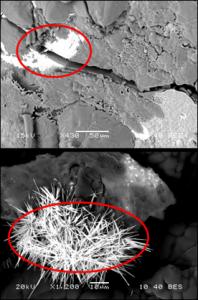 Scanning Electron Microscopy with Energy Dispersive Spectroscopy (SEM w/ EDS) imaging showing two regular morphologies for uranium-rich regions