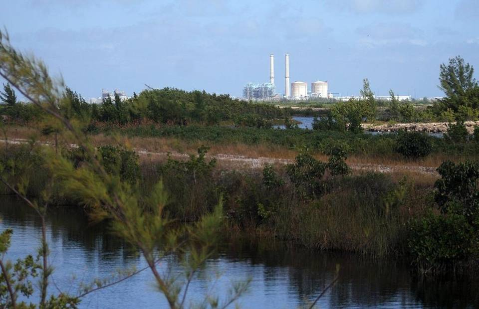 A view of the Turkey Point Nuclear Power Plant, with cooling canals in the foreground. Allison Diaz For the Miami Herald