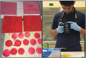 Samples from FX2 fogging test (left). DOE Fellow imaging samples for analysis (right).